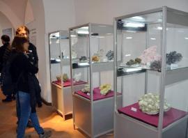 """""""Zestrea Minerală a Maramureșului"""": Un """"buchet"""" de flori de mină la Muzeul Orașului Oradea (FOTO)"""