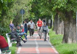Pe biţă, în pericol! Lipsa pistelor dedicate exclusiv bicicliştilor face din Oradea un oraş prea puţin prietenos pentru transportul pe două roţi