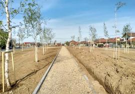 Ritm redus: Forţată să facă economii, Primăria Oradea amână modernizarea Parcului Petőfi şi reduce frecvenţa salubrizării
