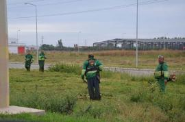 Cosiţi iarba! Primăria le reaminteşte orădenilor că au obligaţia să întreţină spaţiile verzi