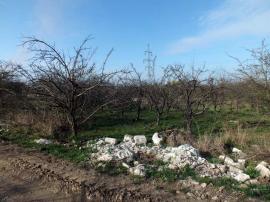 Livada cu... moloz: La marginea Oradiei, vechi livezi au devenit gropi clandestine de gunoi (FOTO)