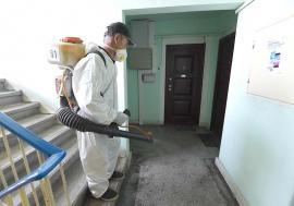 Dezinfecţie generală: Toate scările de bloc din Oradea sunt dezinfectate cu apă oxigenată. Ce părere au locuitorii