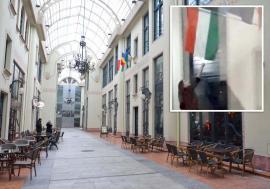 Lecţia de iertare: De ce a scăpat de acuzaţii tânăra care a încercat să ardă steagul Ungariei de pe sediul UDMR Bihor