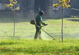 Verde la sac! RER Vest le oferă orădenilor o soluţie la îndemână pentru a scăpa de iarba tăiată