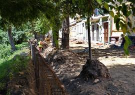 Ne enervează: Copacii care umbresc parcul de pe strada Libertăţii, în pericol să dispară