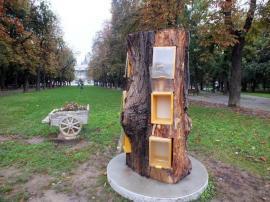 Copacul fără cărţi: Tot mai multe volume dispar din copacii-biblioteci din Parcul 1 Decembrie