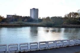 Poftiţi la pas! Primăria Oradea are un proiect de extindere a zonei pietonale. Păreri pro şi contra