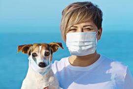 Primul vaccin anti-Covid pentru animale