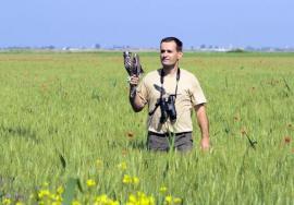 Attila Nagy, specialist în ornitologie: 'La oraş, legătura între om şi natură se pierde'