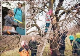 Şcoala lui 'Péter bácsi': Un grup de orădeni au amenajat prima grădină comunitară, unde oricine poate cultiva legume (FOTO)