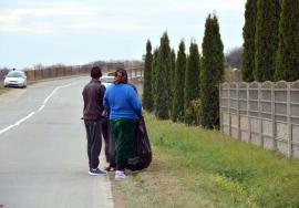 Lene fără leac: Patru din cinci şomeri bihoreni sunt beneficiari de ajutoare sociale care nu vor să muncească