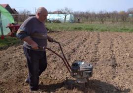 Salvarea la sat: Sute de orădeni au fugit de izolare la ţară, unde au început să-şi repare gospodăriile şi să-şi lucreze grădinile