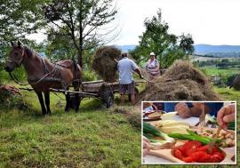 Ospăț în Pădurea Craiului: Orășenii sunt îndemnaţi să exploreze frumusețile Bihorului, cu bunătăți gătite după rețete vechi