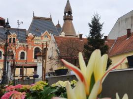 Colțul vesel al Oradiei: hai la poze cu flori! (FOTO)
