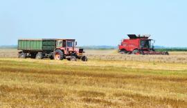 11,2 milioane euro! APIA a autorizat la plată subvenţii pentru aproape 5000 de fermieri
