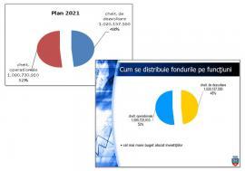 """Partidul e în toate: Bugetul Oradiei a """"îmbrăcat"""" culorile PNL, galben și albastru"""