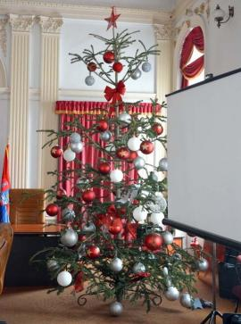 O brad frumos: Consiliul Județean Bihor și-a făcut brad roșu alb verde