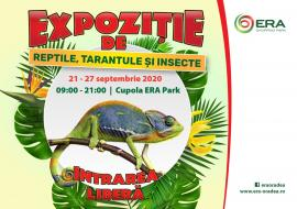 XXL Tarantula Expo revine la ERA Park Oradea!