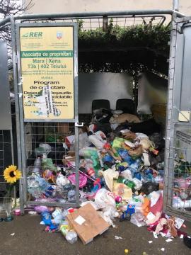 Peste 60 de amenzi, date de Poliția Locală Oradea, pentru depunerea gunoaielor în locuri neconforme şi neîntreţinerea spaţiilor verzi (FOTO)