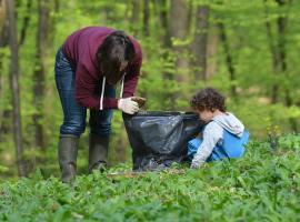 Pentru natură curată: Bihorenii, chemaţi să cureţe gunoaiele din pădurea Săldăbagiu de Munte