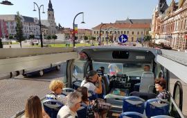 Țânțarul stațiunii turistice Oradea