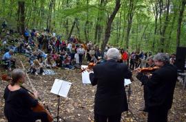 Muzică şi dans, în mijlocul naturii: Sute de bihoreni, spectatorii unui concert simfonic, în pădurea din Băile 1 Mai (FOTO / VIDEO)