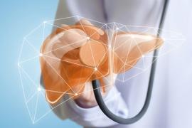 Steatoza hepatica: Află cauzele şi cum poate fi tratată această boală