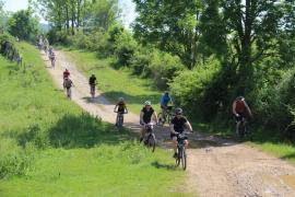 Hai la pedalat! În Pădurea Craiului au fost montate panouri cu hărţile traseelor de cicloturism (FOTO)