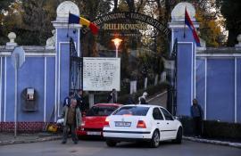 Vine defrişarea! ADP Oradea vrea să taie 200 de arbori maturi crescuţi între mormintele din cimitir