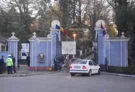 ADP Oradea a plantat 700 de puieţi de paltin la ZOO, Adăpostul Grivei şi Cimitirul Municipal
