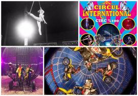 Unde ieşim săptămâna asta, în Oradea: Vine circul, în parcarea Era Shopping Park!