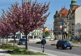 Mai puţin de 1.000 de cazuri active de Covid-19 în Bihor. În Oradea incidenţa continuă să scadă