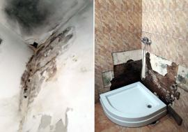Internat la Psihiatrie pentru că a pus rahat la sediul PNL Bihor, Daniel Ivanov a filmat condiţiile mizere. Managerul Dacian Foncea confirmă: 'Acolo e o bătaie de joc!' (FOTO / VIDEO)