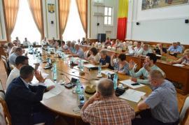 Mintea de pe urmă: De ce jumătate din consilierii PNL nu şi-au donat indemnizațiile Asociației Down Oradea
