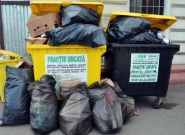 RER Ecologic Service, fără vacanţă: Joi şi vineri, deşeurile se vor colecta după programul obişnuit