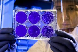 OMS demontează miturile ce ţin de coronavirus. Vezi despre ce este vorba!