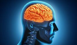 Şapte mituri despre mintea umană