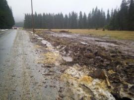 Drumul de 64 milioane de lei spre Padiş e distrus de lemnari: buştenii sunt târâţi şi curăţaţi pe asfalt şi pe păşunea protejată (FOTO)