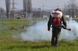 Noi etape de dezinsecţie şi de tratamente fitosanitare în Oradea