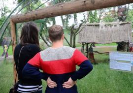 ADP Oradea cumpără lucernă pentru animalele de la Grădina Zoologică