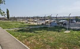 ADP Oradea angajează îngrijitori de animale şi muncitori necalificaţi