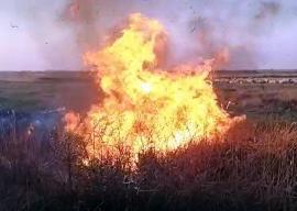 Cioban cu focuri: Complexul de la Cefa, cât pe ce să fie distrus de un incendiu provocat de un oier (VIDEO)