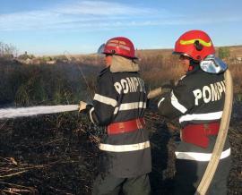 16 incendii în două zile! În Paleu, flăcări puse intenţionat pe un câmp s-au extins la o casă