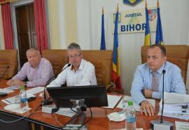 Vice în travesti: Traian Bodea rămâne în continuare vicepreşedinte CJ, chiar dacă a fost dat afară din ALDE