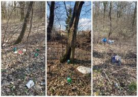 Ne enervează: Pădurea din Felix, distrusă de şoferii cu ATV-uri şi plină cu gunoaie (FOTO)