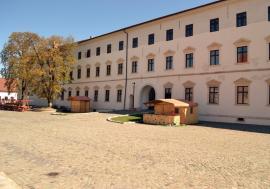 """Dezinfecție cu tâlc: De ce vrea directoarea Muzeului Cetății Oradea să facă """"curățenie"""" prin birouri"""