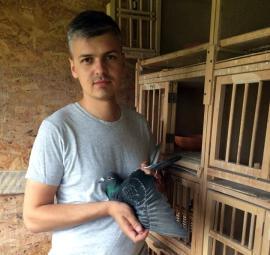 Campionatul porumbeilor voiajori: Nemeti Nandor câștigă etapa de viteză - demifond Sokolina