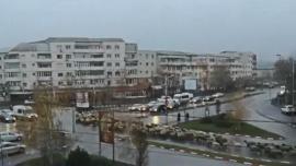 O turmă de oi a blocat circulația în centrul oraşului Alexandria (VIDEO)