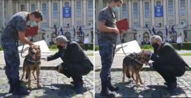 Ozzy, câinele poliţist care a salvat viaţa femeii dispărute în Cociuba Mare, a fost felicitat de ministrul Internelor (VIDEO)