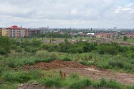 Parc din groapă de gunoi, în Oradea: Au fost plantaţi primii 56 de arbori din Parcul Soarelui (FOTO)